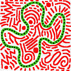 Comme Haring